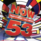 Various Artists - Now That's What I Call Music, Vol. 53  artwork