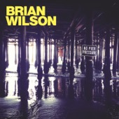 Brian Wilson - No Pier Pressure (Deluxe)  artwork