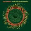 Dub Side of the Mule (Standard Version) - Gov't Mule, Gov't Mule