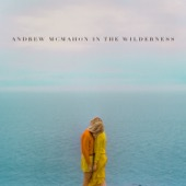 Andrew McMahon in the Wilderness - Andrew McMahon In the Wilderness  artwork