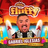 Cover to Gabriel Iglesias's Aloha Fluffy