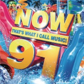 Various Artists - Now That's What I Call Music! 91 artwork