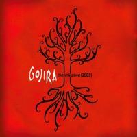 Gojira - The Link (Alive 2003)