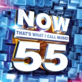 NOW That's What I Call Music, Vol. 55 - Various Artists Cover Art