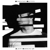 Albert Hammond Jr. - Momentary Masters  artwork