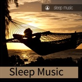 Sleep Music - Sleep Music  artwork