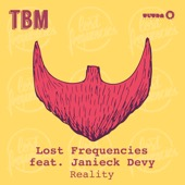 Lost Frequencies - Reality (feat. Janieck Devy)  arte