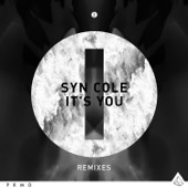 Syn Cole - It's You (Broiler Remix [Radio Edit]) artwork