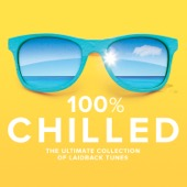 Various Artists - 100% Chilled  artwork