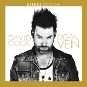 David Cook - Digital Vein (Deluxe Version)  artwork