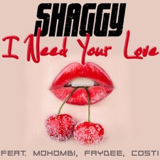 I Need Your Love (feat. Mohombi, Faydee & Costi) by Shaggy