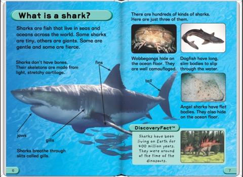 fish discover sharks shark books kids