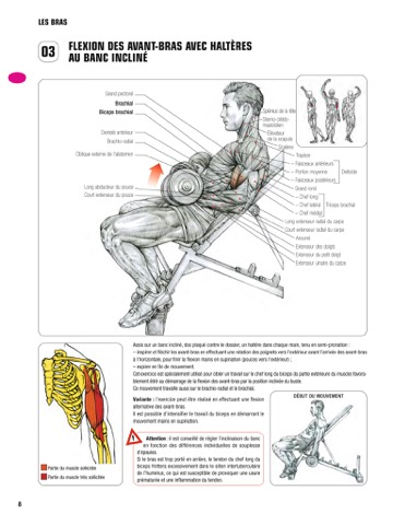 Itunes livres guide des mouvements de musculation par for Guide musculation
