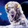 Buffalo Moon casino slot game