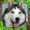 Gluten Free Games - Stray Dog Simulator  artwork