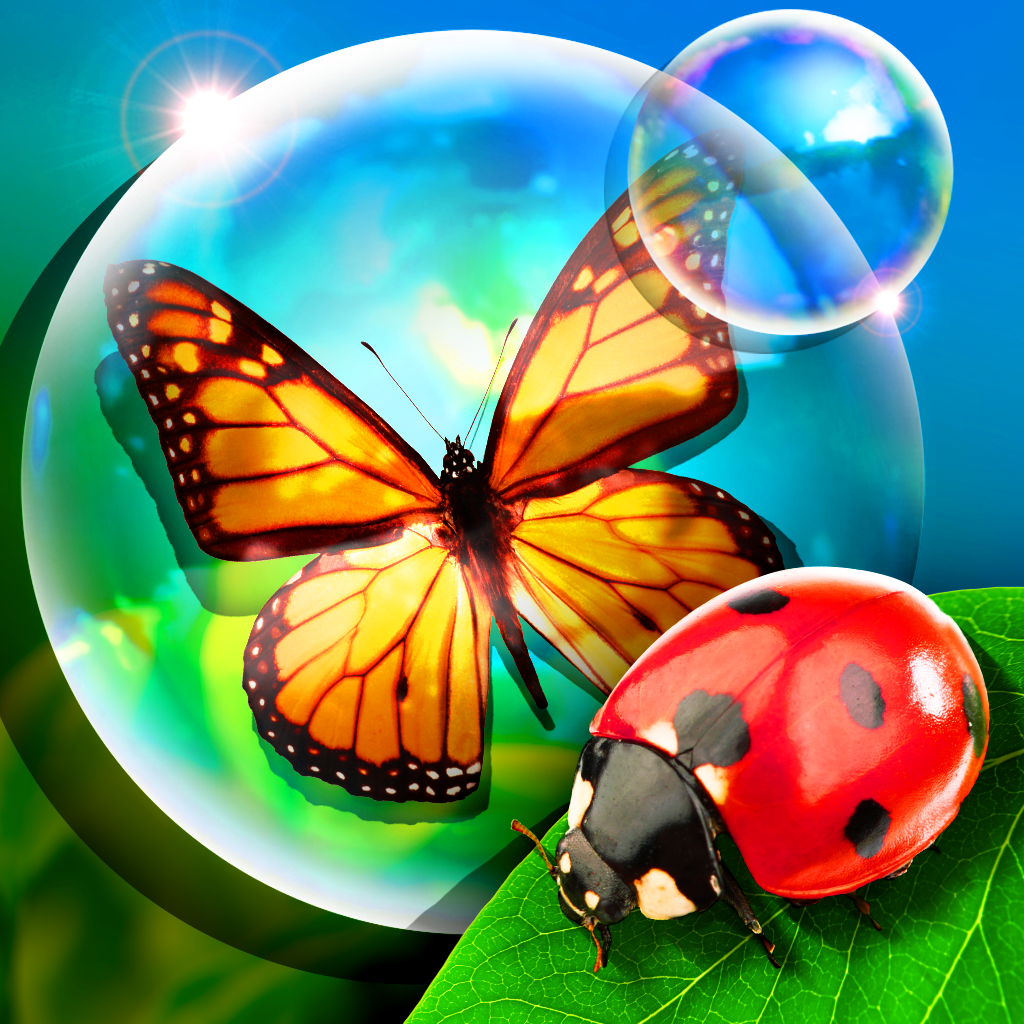 Bugs and Bubbles