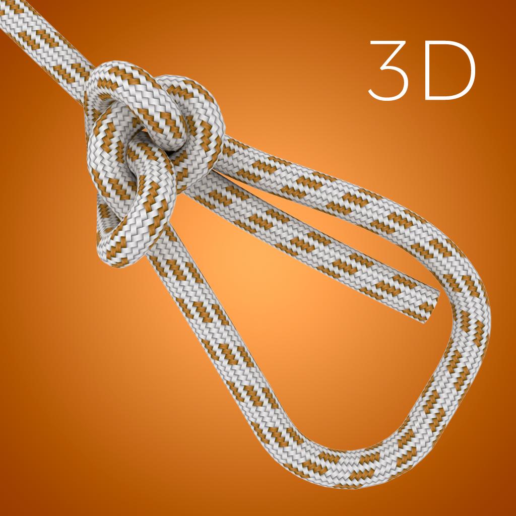 Animated Knots
