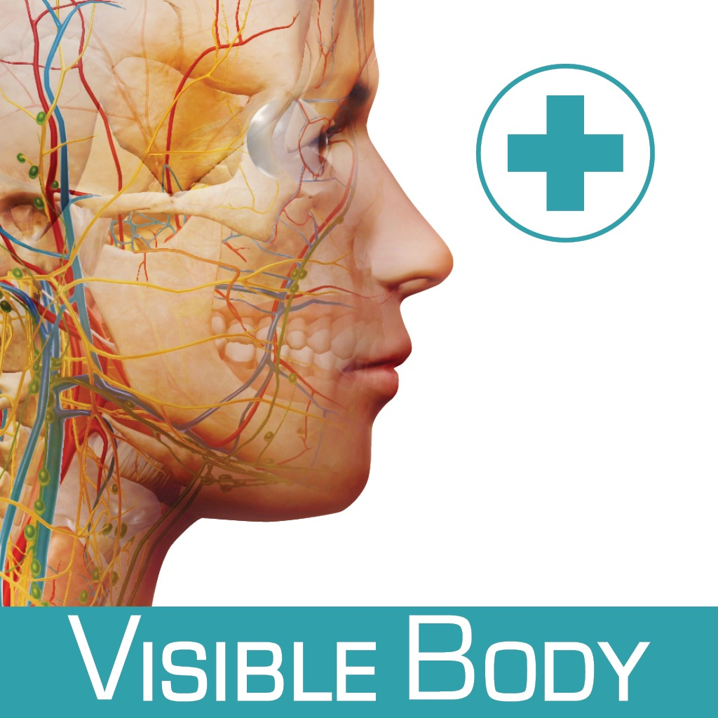 Anatomy & Function: A 3D Visual Reference of the Human Body App ...