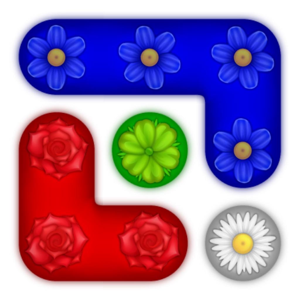 花细胞:Flower Cells