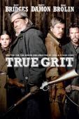 Ethan Coen & Joel Coen - True Grit (2010)  artwork
