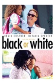 Mike Binder - Black or White  artwork