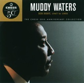 (I'm Your) Hoochie Coochie Man - Muddy Waters