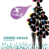 Green Grass (Radio Edit)