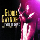 Gloria Gaynor - I Will Survive artwork