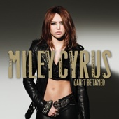 Can't Be Tamed cover art