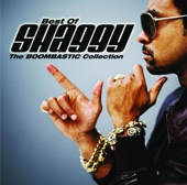 It Wasn't Me (feat. Ricardo Ducent) - Shaggy Cover Art