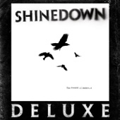 Shinedown - Second Chance  artwork