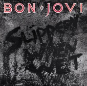 Bon Jovi Livin' On a Prayer video & mp3