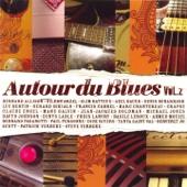 Autour du blues, vol. 2