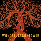 Wolosi I Lasoniowie