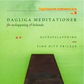 Dagliga Meditationer För Avslappning Och Helande
