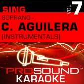 Reflection  (Karaoke Instrumental Track) [In the Style of Christina Aguilera]