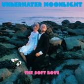 Underwater Moonlight - The Soft Boys