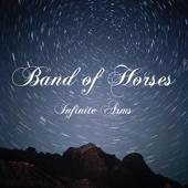 Infinite Arms cover art