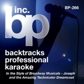 Backtracks Professional Karaoke: In the Style of Broadway Musicals (Songs from Joseph and the Amazing Technicolor Dreamcoat)
