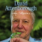 The Serpent's Stare: David Attenborough's Life Stories (Episode 11, Series 1)
