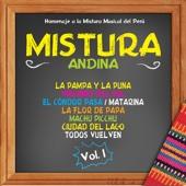 Serie Mistura de Ritmos: Mistura Andina, Vol. 1