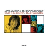 David Cassidy & The Partridge Family - I Think I Love You artwork