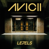Avicii - Levels (Original Version) ilustración
