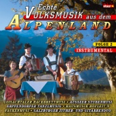Echte Volksmusik aus dem Alpenland, Folge 2 (Instrumental)