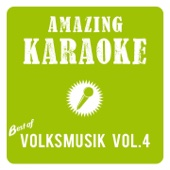 Amazing Karaoke - Best of Volksmusik, Vol. 4