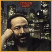 Marvin Gaye - Sexual Healing artwork