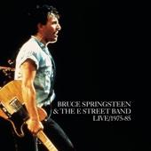Bruce Springsteen & The E Street Band - Jersey Girl (Live) Grafik