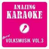 Best of Volksmusik, Vol. 3 (Karaoke)
