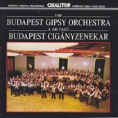 A 100 Tagú Budapest Cigányzenekar