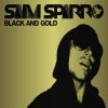 Sam Sparro - Black & Gold kunstwerk